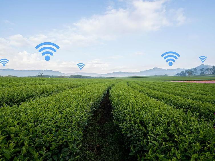 Protetto: Digital Transformation #06 – 🌱 Farming 4.0